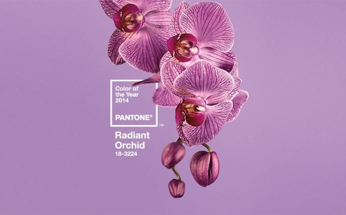 radiant_orquid_color_2014