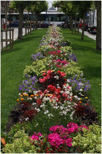 Bulevar de la ciudad adornado con flores